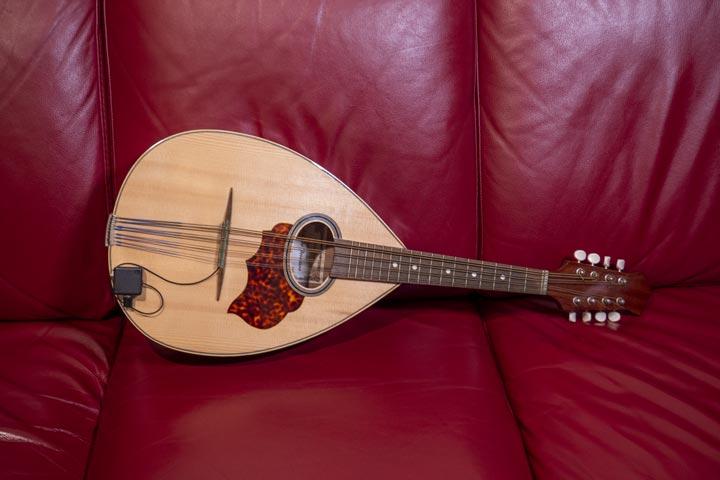 Mandola strumento musicale della famiglia del mandolino